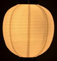 白熱球(10W)